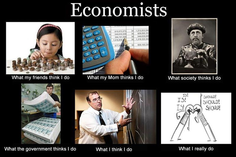 What Economits Do